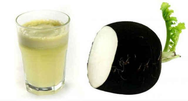 Черная редька – королева овощей. польза и вред. полезные  свойства