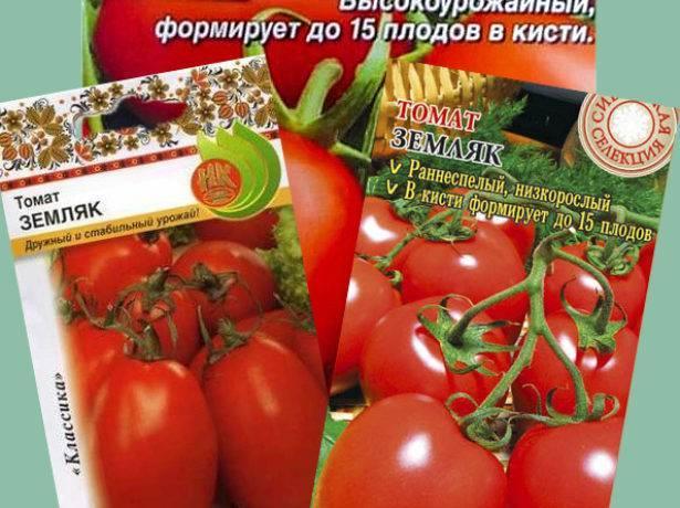 Томат земляк: описание и особенности выращивания сорта