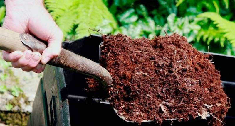 Что положить в лунку при посадке картофеля и получить урожай