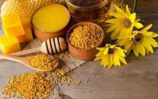 Перга пчелиная – полезные и лечебные свойства, приминение