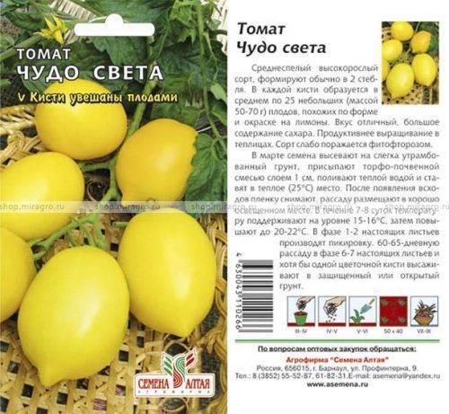 Сорт томатов «чудо света»