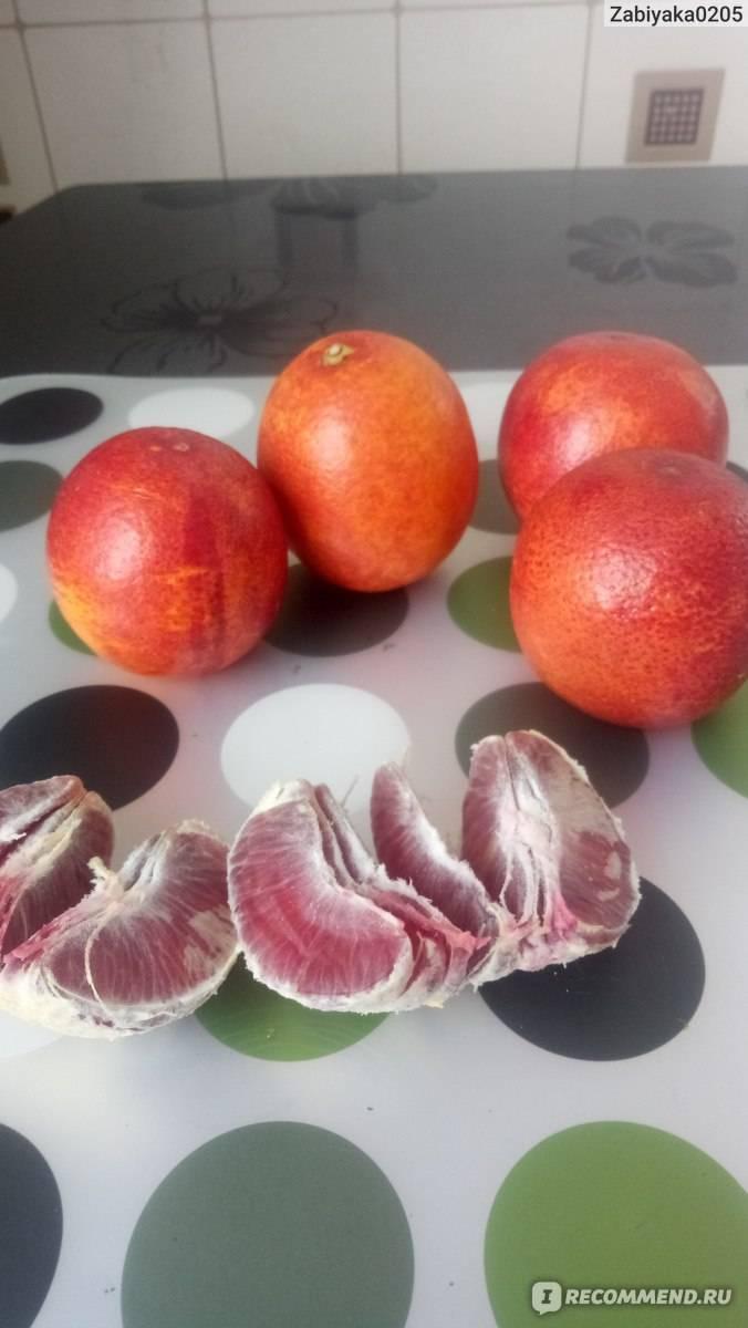 Сравнить продукты гранат обыкновенный и грейпфрут
