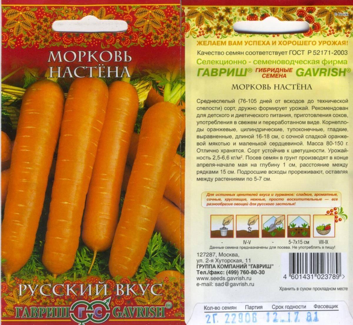Морковь под именем сластена — высокий урожай сладких корнеплодов
