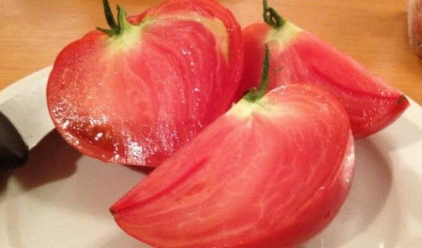 Томат воловье сердце: характеристика и описание сорта, урожайность с фото