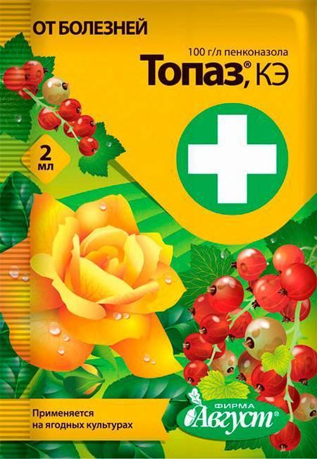 Хорус - инструкция по обработке растений, отзывы, состав