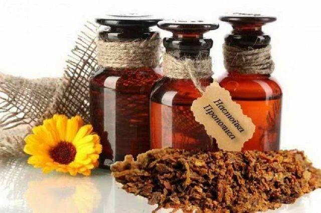 Настойка прополиса: лечебные свойства, рецепты, противопоказания