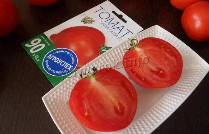 Идеальный для переработки и консервации сорт томата «хали-гали»: описание, характеристика, посев на рассаду, подкормка, урожайность, фото, видео и самые распространенные болезни томатов