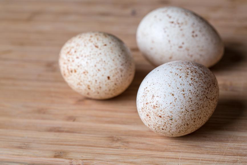 Польза и вред куриного яйца вареного, домашнего, голубого