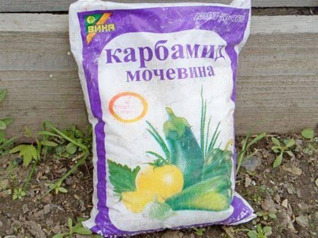 Мочевина удобрение применение на огороде