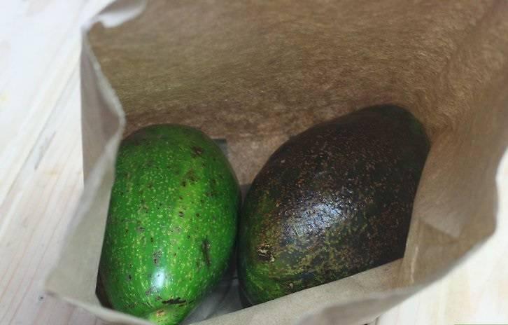 Как правильно хранить авокадо в домашних условиях