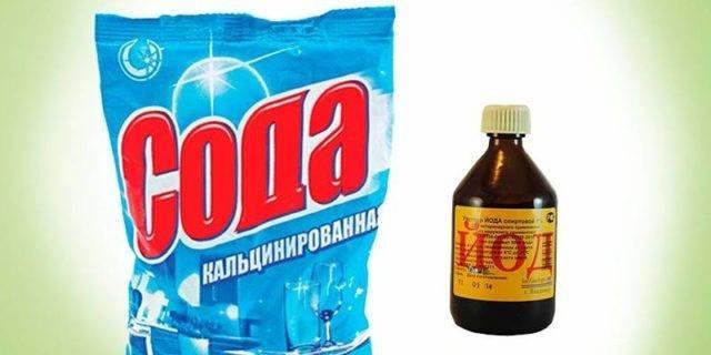Сода от тли на смородине и для обильного урожая