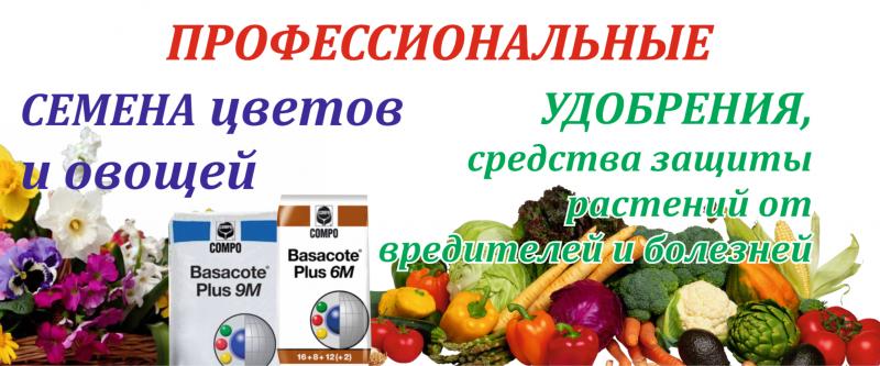 Удобрения для цитрусовых: подкормка комнатных и уличных цитрусовых растений в домашних условиях, выбор удобрений и сроки внесения