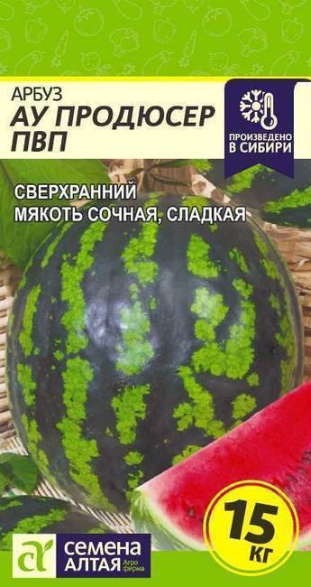 Арбуз «ау продюсер» – сорт-рекордсмен