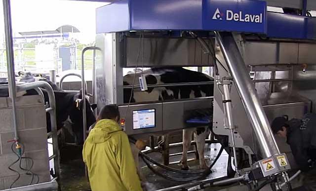 Доильный аппарат delaval mu480