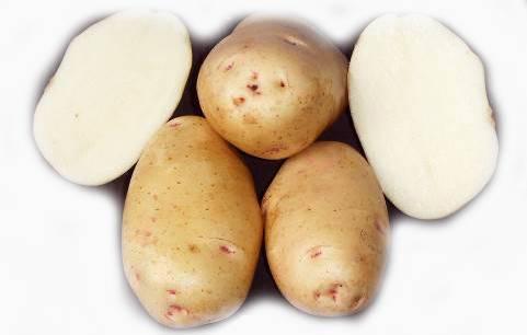 Картофель сорт инара