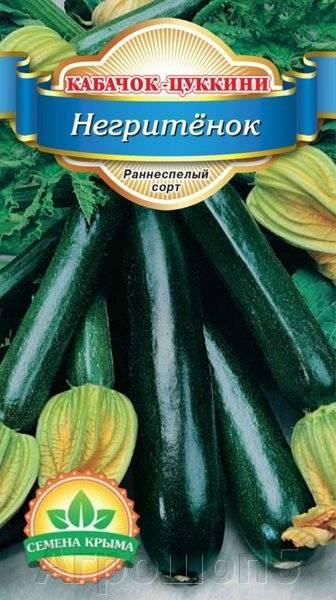 Кабачок цуккини негритенок - фото урожая, цены, отзывы и особенности выращивания
