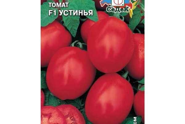 Описание сорта томатов белла росса