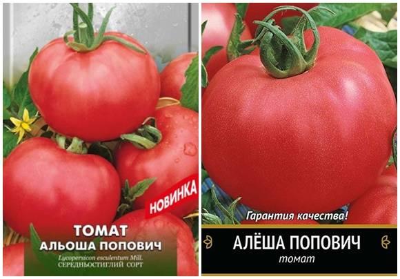 Томат алеша попович характеристика и описание сорта