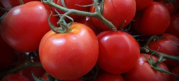 Характеристика и описание сорта томатов анюта