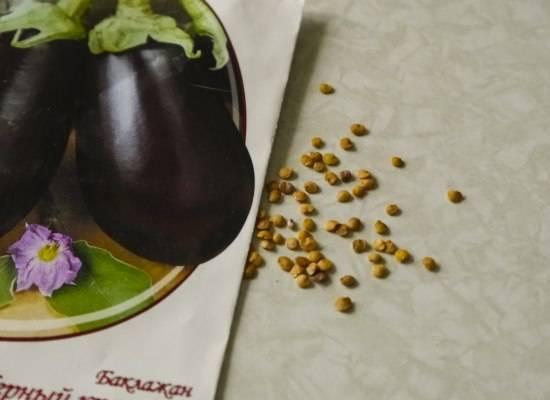 Полезные советы по подготовке семян баклажан к посеву на рассаду, а также как подготовить тару и грунт? примерные сроки посадки