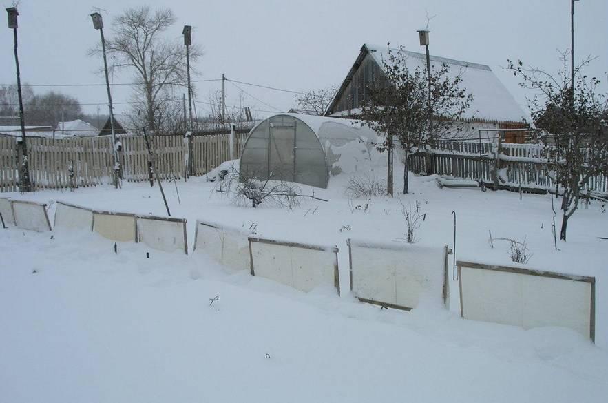 Зачем снегозадержание на полях и в огороде: фото, технология