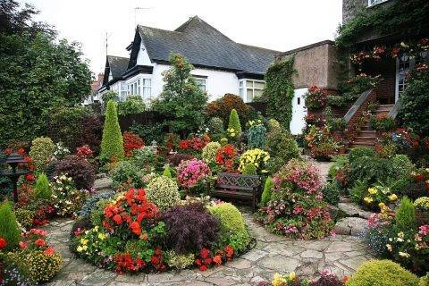 Ирисы в ландшафтном дизайне сада: с какими цветами лучше сочетается, фото, примеры клумб