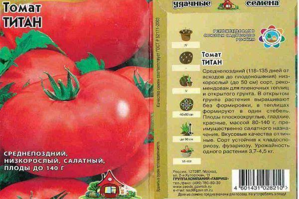 Проверенный временем томат «титан» для выращивания в открытом грунте