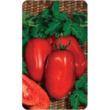 """Томат """"новинка приднестровья"""": описание сорта, фото, способ употребления помидоров"""