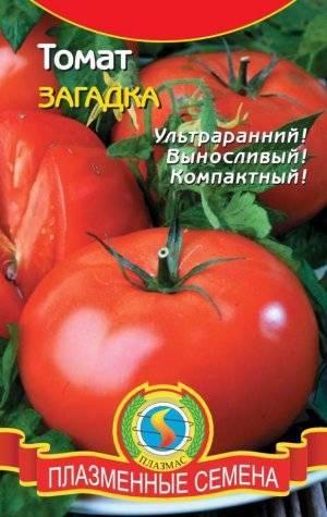 Помидоры-персики загадка природы: особенности сорта, описание агротехники, отзывы о томате
