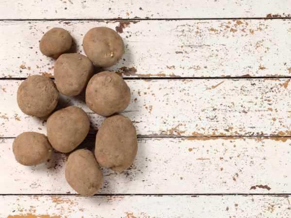 Киви – уникальный сорт картофеля