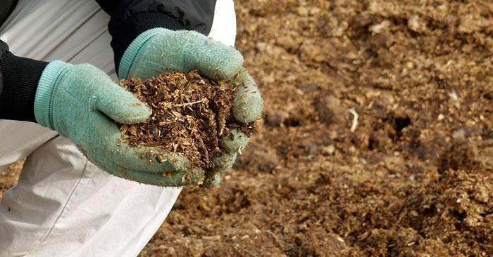 Удобрение почвы козьим навозом: преимущества, сферы использования и условия хранения