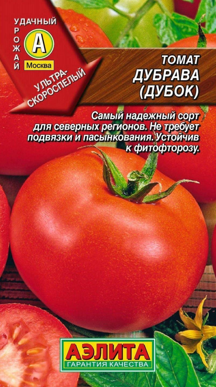 Томат дубрава: характеристики сорта и советы по выращиванию рассады. рекомендации по увеличению урожая (70 фото + видео)