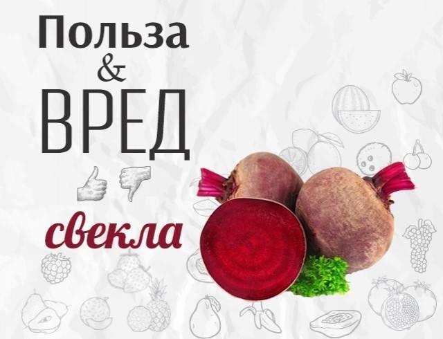 Польза свеклы для организма женщины: какие свойства у овоща, в чем может быть вред для здоровья от сырого или вареного продукта, чем хорош свежевыжатый сок?