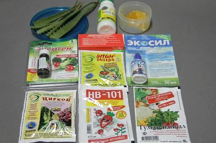 Подготовка семян томатов к посеву на рассаду в домашних условиях.