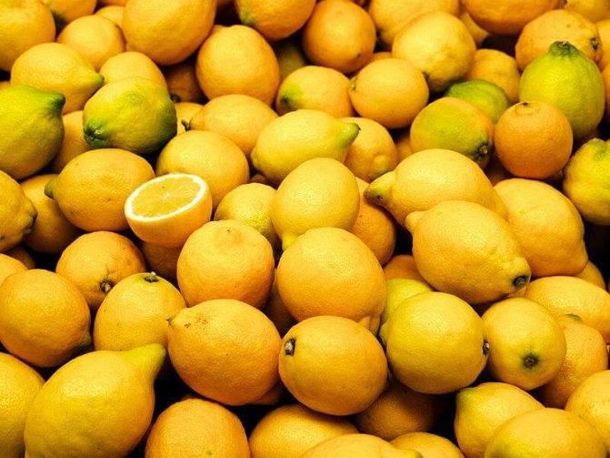 Апельсин это фрукт или ягода — ягоды грибы