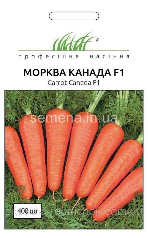 Морковь наярит f1 — описание сорта, фото, отзывы, посадка и уход