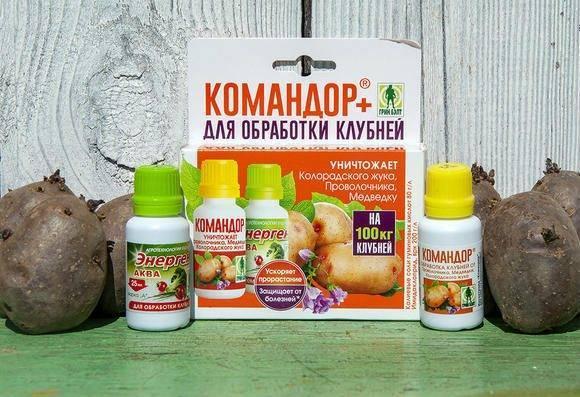 Инсектицид «командор» и его применение на дачном участке