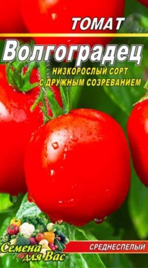 Выращиваем томат «волгоградский 5 95»: описание, особенности и фото сорта