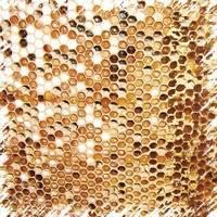 Болезни пчел и их лечение каменный расплод