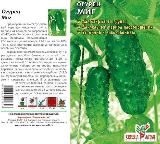 Огурец каскад: описание и характеристика сорта, фото