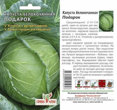 Лучшие сорта семян белокочанной капусты с названиями