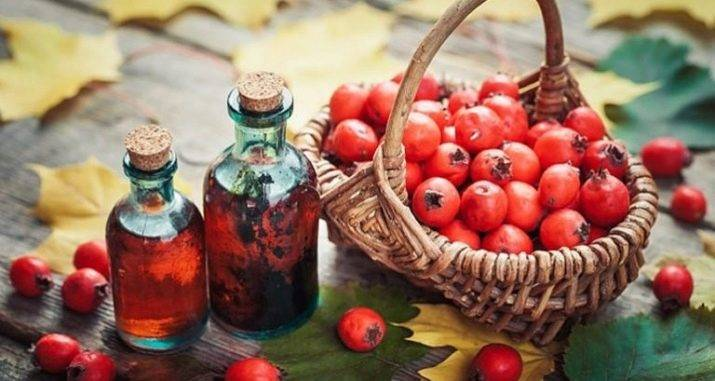 Настойка боярышника повышает или понижает давление — ягоды грибы