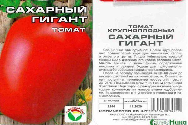Выращивание томата сахарный гигант