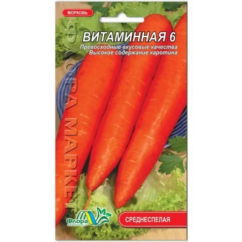 Морковь витаминная 6: выращивание на даче, описание сорта
