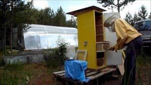 Павильон для пчел, как решение большинства проблем