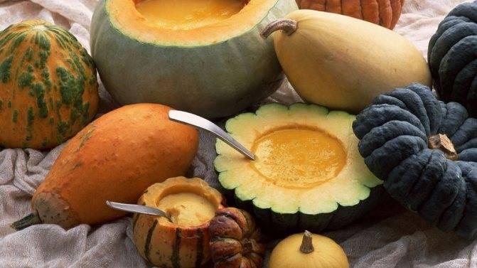 Чем полезна тыква для организма женщины? калорийность, использование продукта и возможный вред