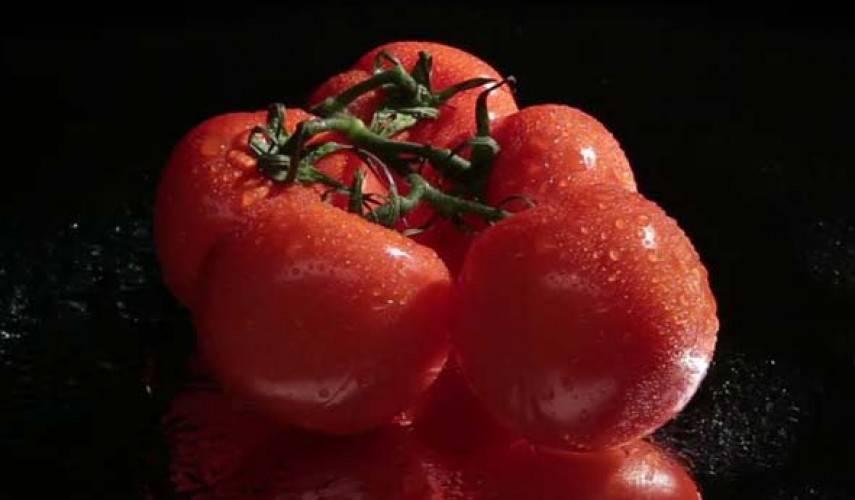 Борная кислота: незаменимая подкормка для помидоров
