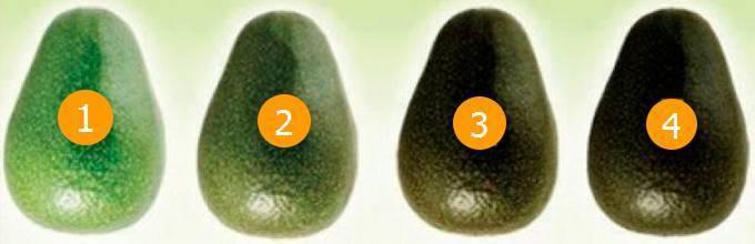 Авокадо внутри коричневый