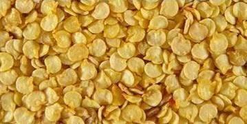 Правильный посев семян перца и баклажан на рассаду: когда сеять, как избежать пикировки, как поливать и ухаживать за рассадой