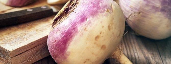 Репа – овощ для любого региона